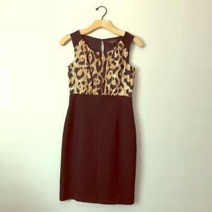 The Limited Collection animal print mini dress